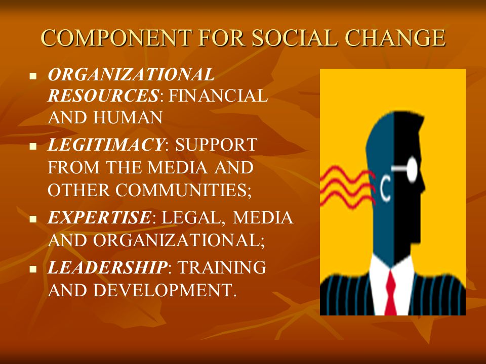 COMPONENT FOR SOCIAL CHANGE ORGANIZATIONAL RESOURCES: FINANCIAL AND HUMAN LEGITIMACY: SUPPORT FROM THE MEDIA AND OTHER COMMUNITIES; EXPERTISE: LEGAL, MEDIA AND ORGANIZATIONAL; LEADERSHIP: TRAINING AND DEVELOPMENT.