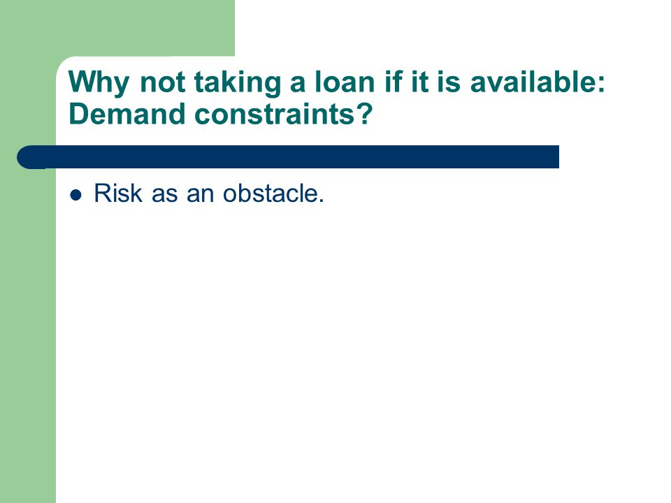 Risk as an obstacle. Why not taking a loan if it is available: Demand constraints?