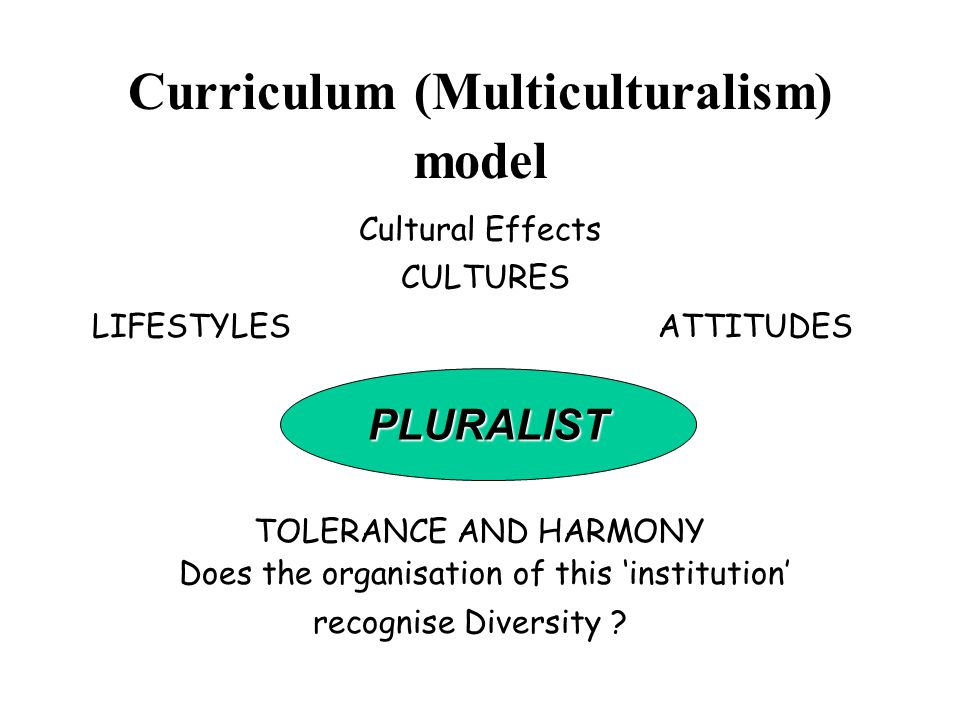 Curriculum (Multiculturalism) model Cultural Effects CULTURES LIFESTYLES ATTITUDES PLURALIST TOLERANCE AND HARMONY Does the organisation of this 'institution' recognise Diversity .