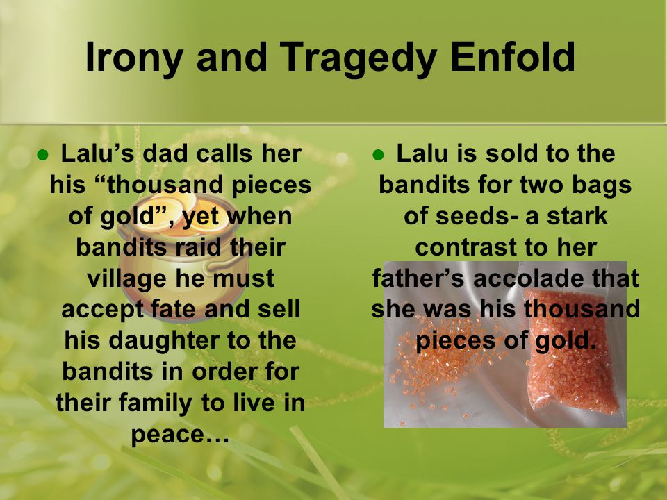 Irony and Tragedy Enfold Lalu's dad calls her his thousand pieces of gold , yet when bandits raid their village he must accept fate and sell his daughter to the bandits in order for their family to live in peace… Lalu is sold to the bandits for two bags of seeds- a stark contrast to her father's accolade that she was his thousand pieces of gold.