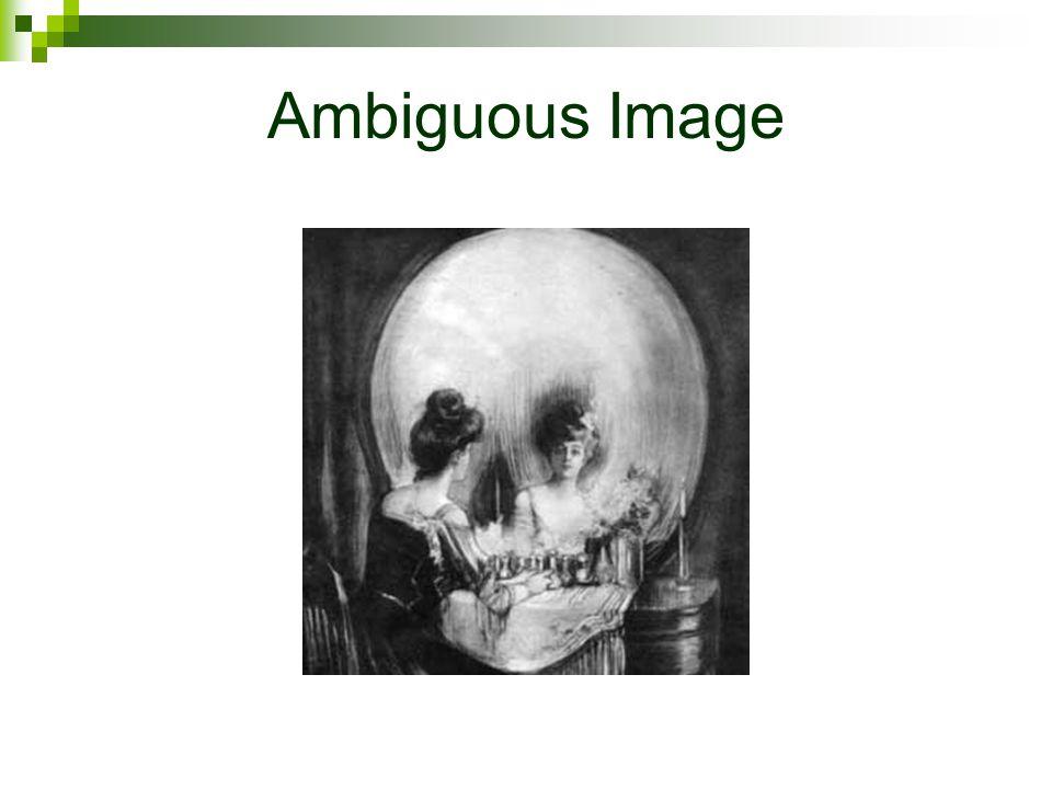Ambiguous Image