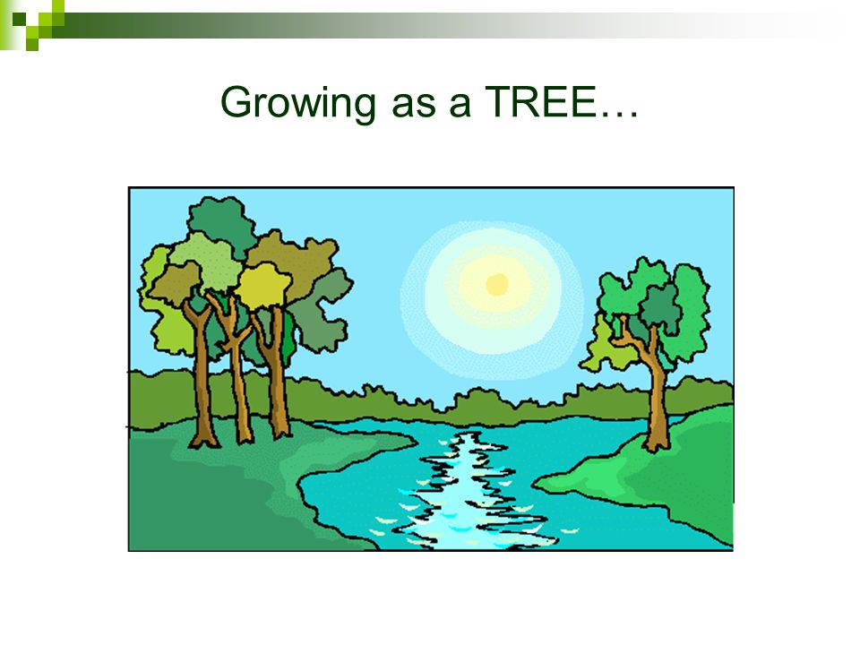 Growing as a TREE…