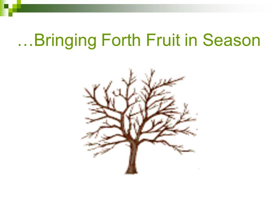 …Bringing Forth Fruit in Season
