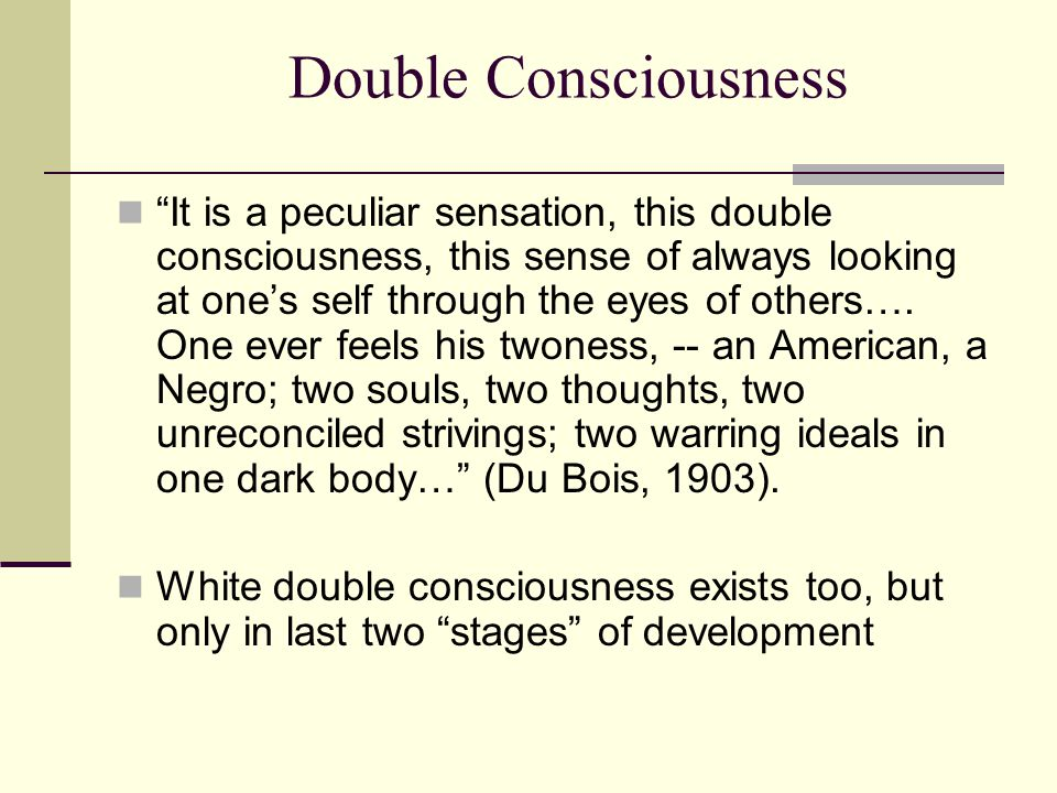 """Double Consciousness """"It is a peculiar sensation, this double consciousness, this sense of always looking at one's self through the eyes of others…. O"""