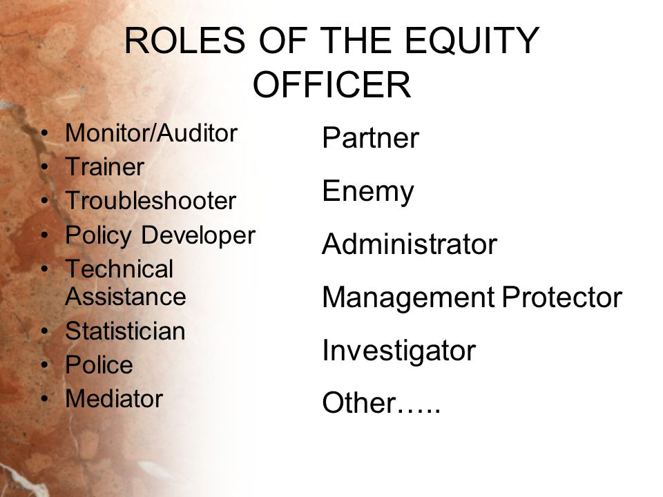 ROLES OF THE EQUITY OFFICER Monitor/Auditor Trainer Troubleshooter Policy Developer Technical Assistance Statistician Police Mediator Partner Enemy Ad