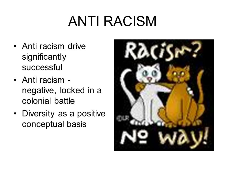 ANTI RACISM Anti racism drive significantly successful Anti racism - negative, locked in a colonial battle Diversity as a positive conceptual basis