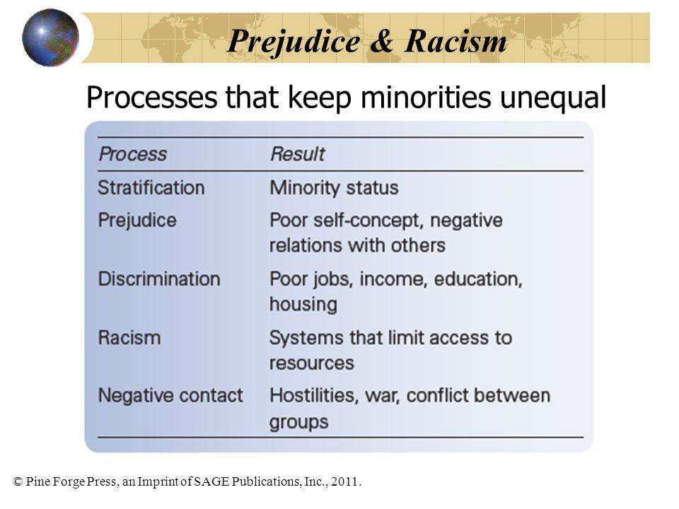 © Pine Forge Press, an Imprint of SAGE Publications, Inc., 2011. Processes that keep minorities unequal Prejudice & Racism
