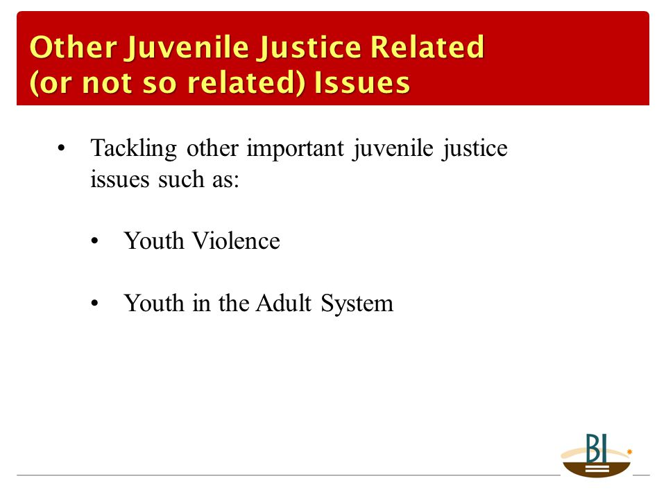 Tackling other important juvenile justice issues such as: Youth Violence Youth in the Adult System Other Juvenile Justice Related (or not so related)
