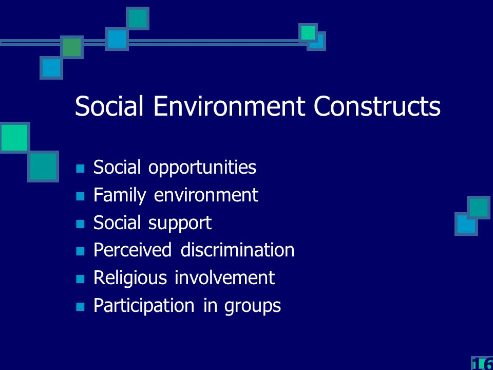 16 Social Environment Constructs Social opportunities Family environment Social support Perceived discrimination Religious involvement Participation i