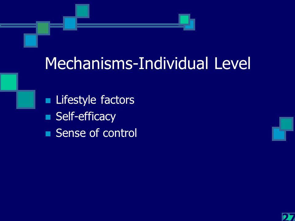 27 Mechanisms-Individual Level Lifestyle factors Self-efficacy Sense of control