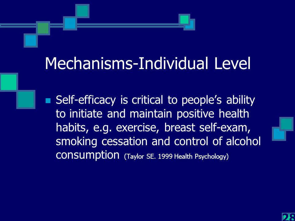 28 Mechanisms-Individual Level Self-efficacy is critical to people's ability to initiate and maintain positive health habits, e.g. exercise, breast se