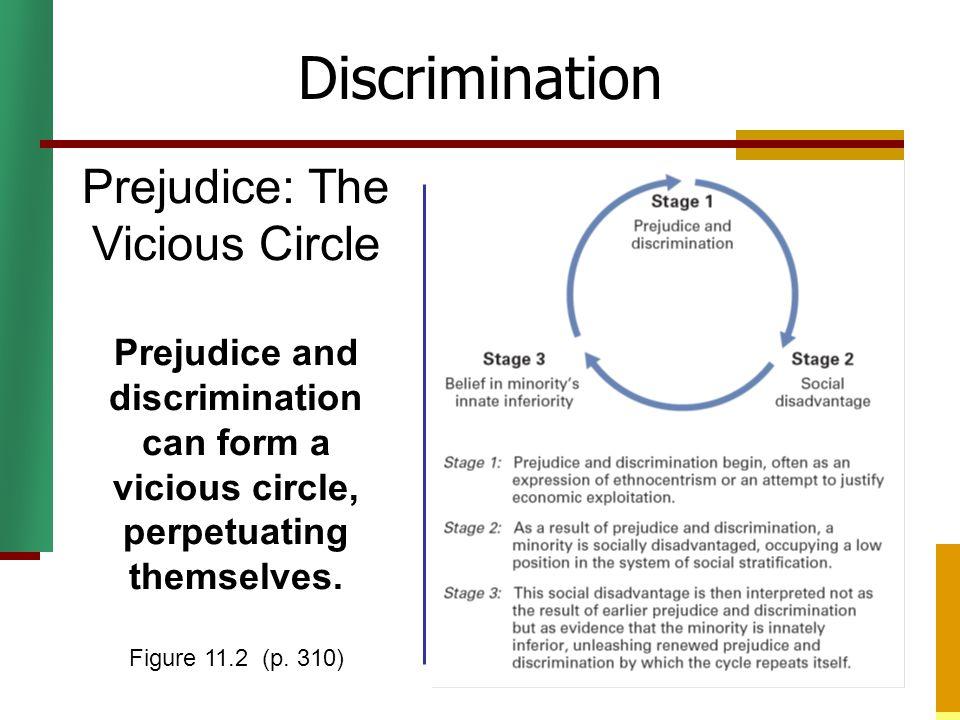 Discrimination Prejudice: The Vicious Circle Prejudice and discrimination can form a vicious circle, perpetuating themselves. Figure 11.2 (p. 310)