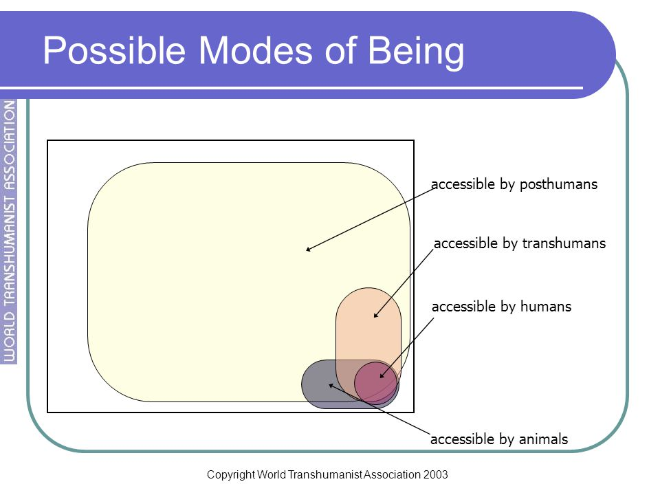 Copyright World Transhumanist Association 2003 Possible Modes of Being accessible by humans accessible by transhumans accessible by animals accessible by posthumans