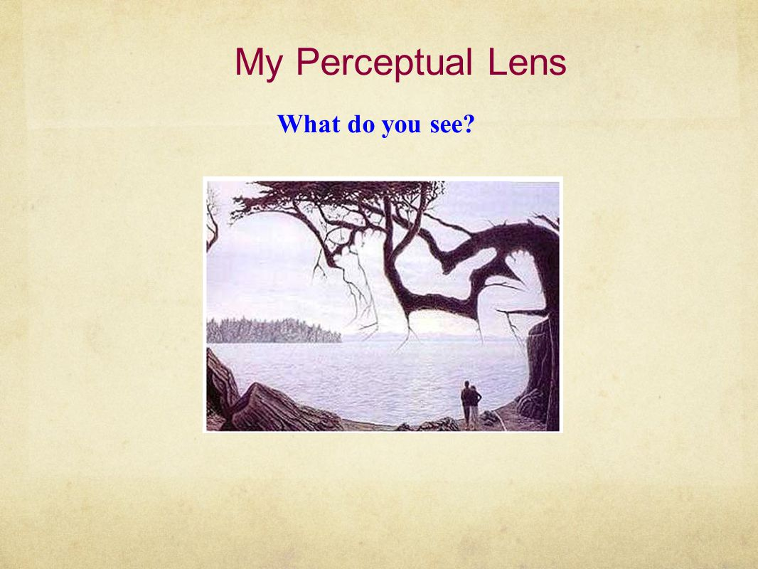 My Perceptual Lens What do you see?