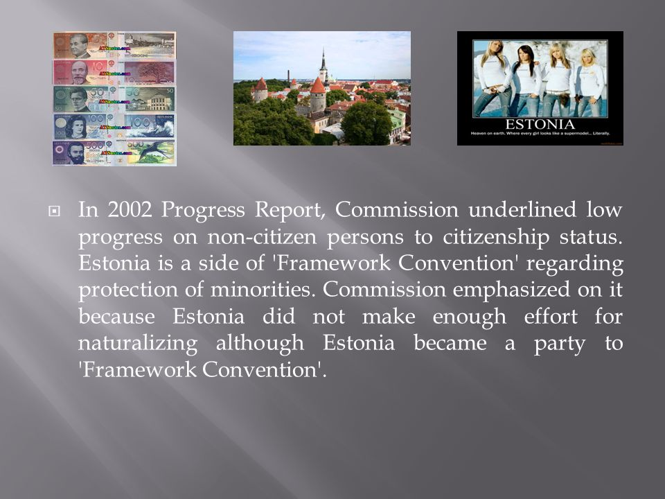  In 2002 Progress Report, Commission underlined low progress on non-citizen persons to citizenship status.
