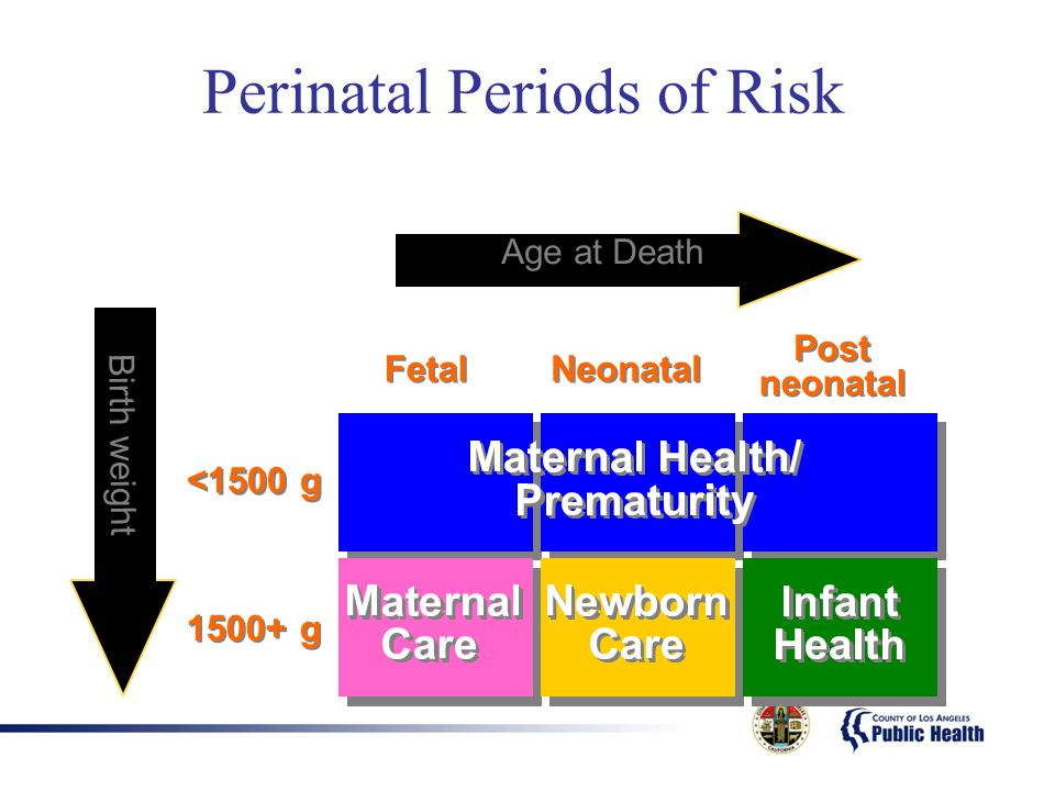 Perinatal Periods of Risk <1500 g 1500+ g Fetal Neonatal Post neonatal Age at Death Birth weight