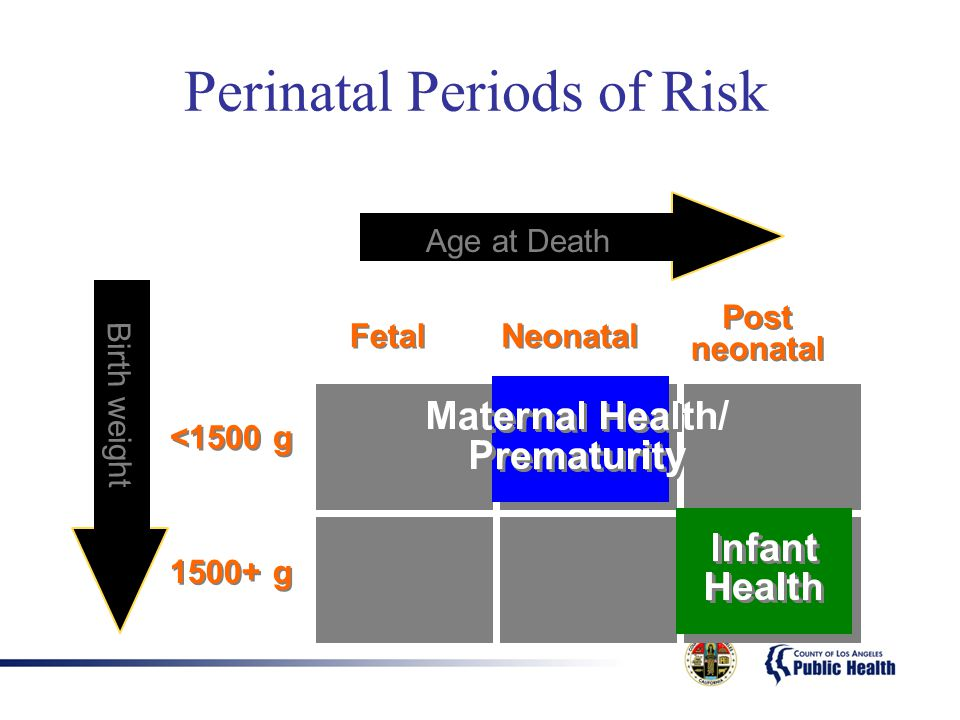 Perinatal Periods of Risk <1500 g 1500+ g neonatal Fetal Neonatal Post neonatal Age at Death Birth weight