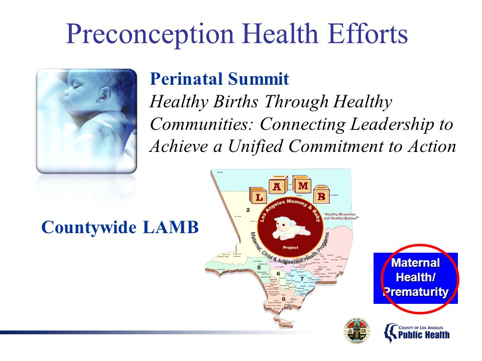 Preconception Health Efforts Perinatal Summit Healthy Births Through Healthy Communities: Connecting Leadership to Achieve a Unified Commitment to Act