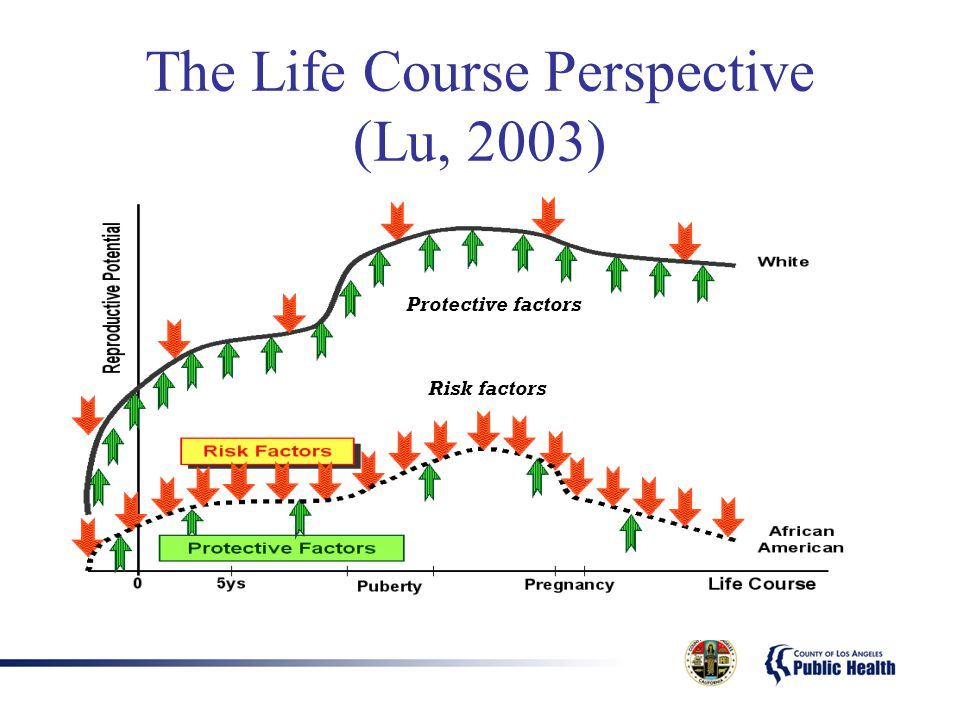 The Life Course Perspective (Lu, 2003) Protective factors Risk factors