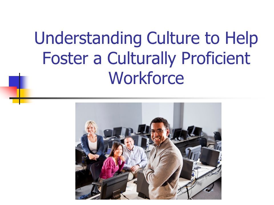 The Priority Goal District Goal #4 Develop a highly qualified, diverse, and culturally proficient district workforce Action plan 4c Ensure that every employee receives training in skills of cultural proficiency