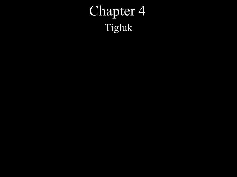 Chapter 4 Tigluk