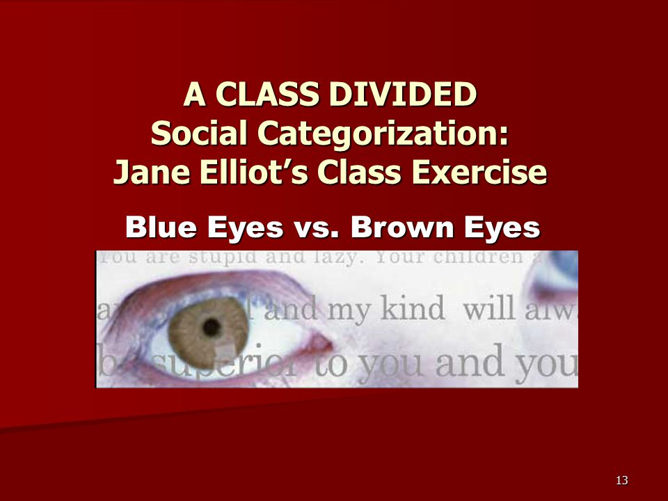 13 A CLASS DIVIDED Social Categorization: Jane Elliot's Class Exercise Blue Eyes vs. Brown Eyes