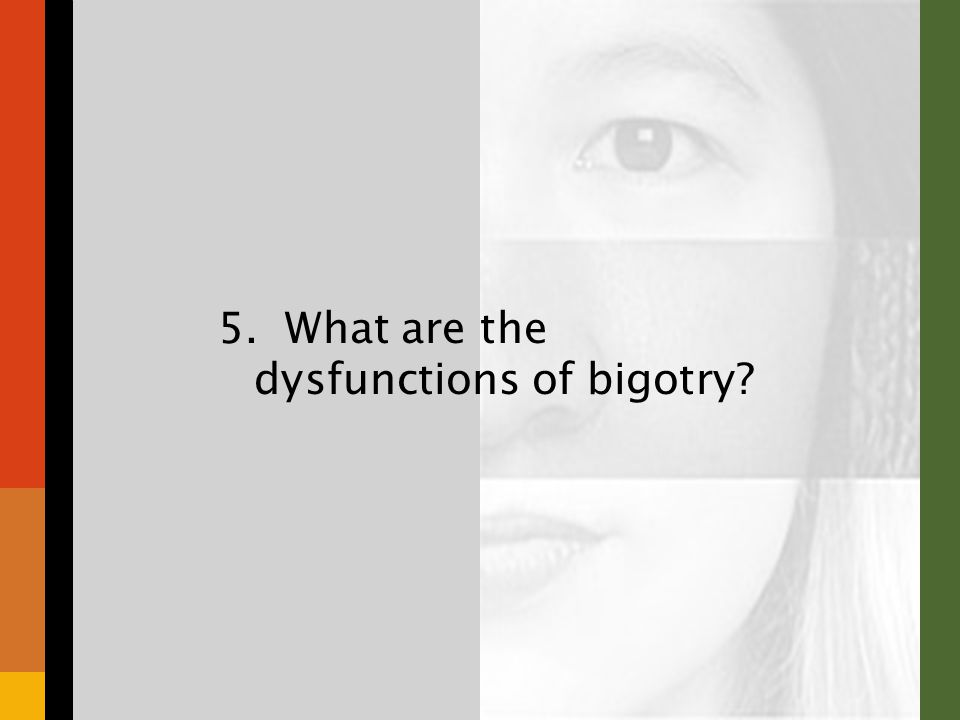 5. What are the dysfunctions of bigotry