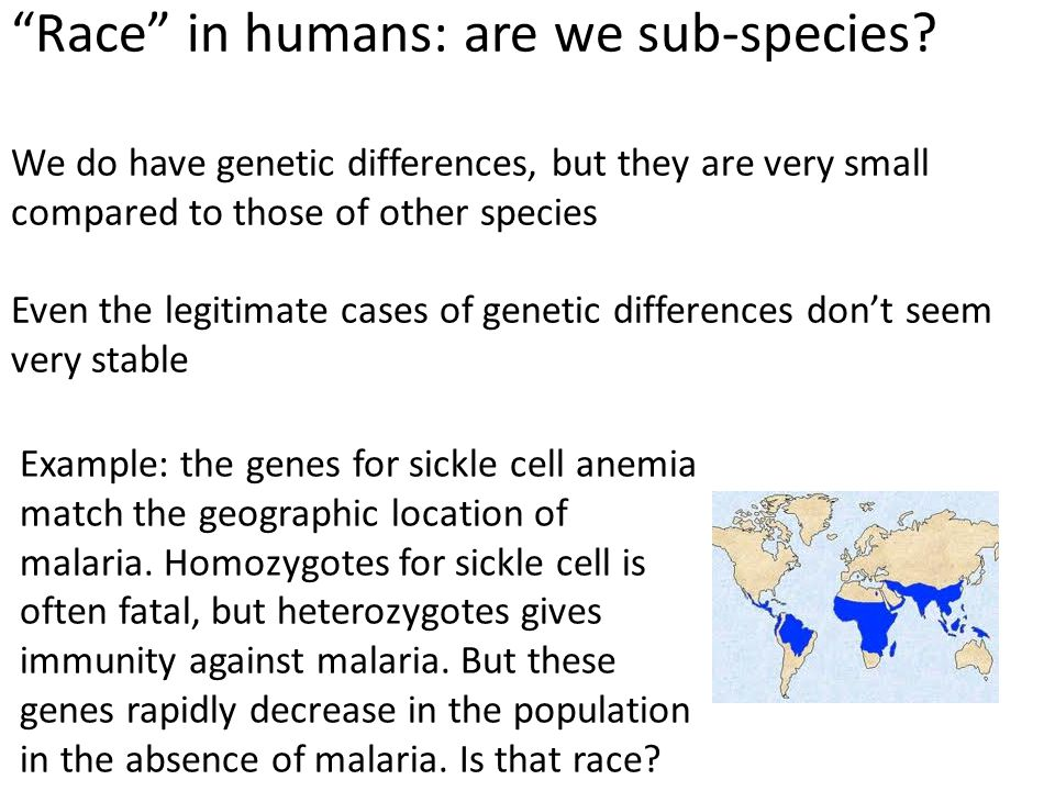 Race in humans: are we sub-species.