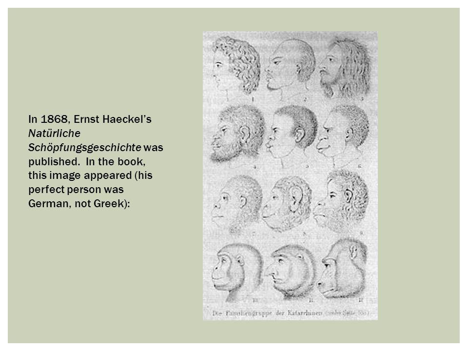 In 1868, Ernst Haeckel's Natürliche Schöpfungsgeschichte was published. In the book, this image appeared (his perfect person was German, not Greek):