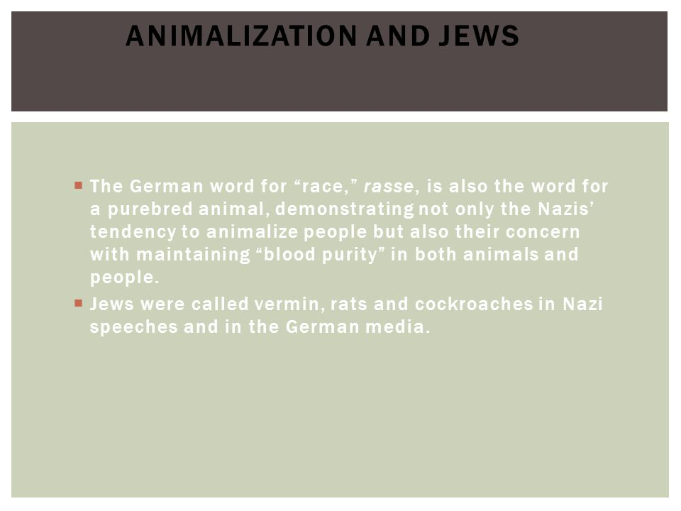  The German word for race, rasse, is also the word for a purebred animal, demonstrating not only the Nazis' tendency to animalize people but also their concern with maintaining blood purity in both animals and people.