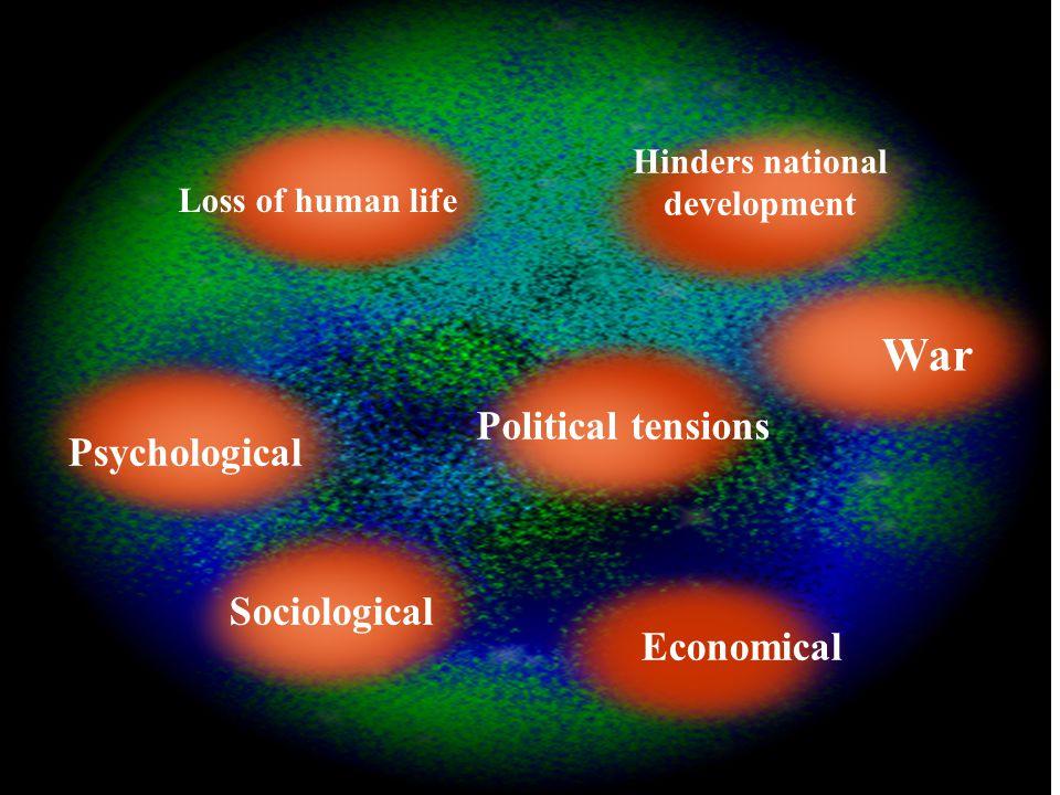 Loss of human life War Economical Hinders national development Political tensions Sociological Psychological
