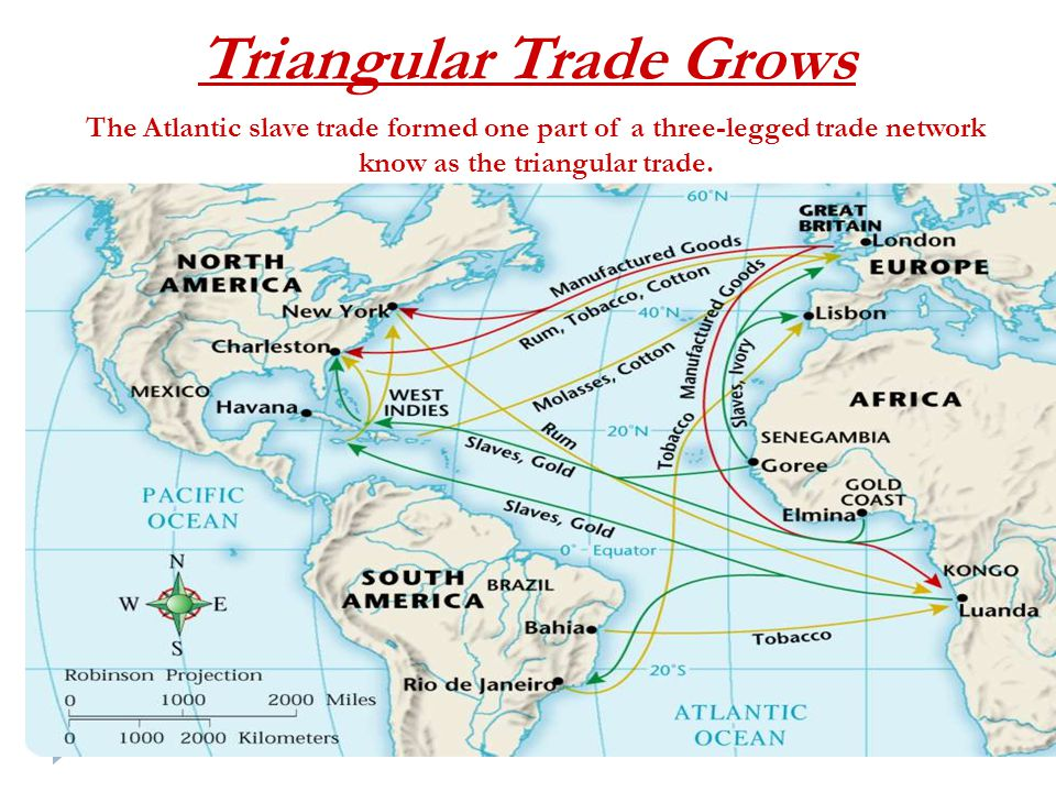 Triangular Trade Grows The Atlantic slave trade formed one part of a three-legged trade network know as the triangular trade.