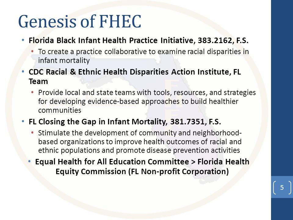 Genesis of FHEC Florida Black Infant Health Practice Initiative, 383.2162, F.S.