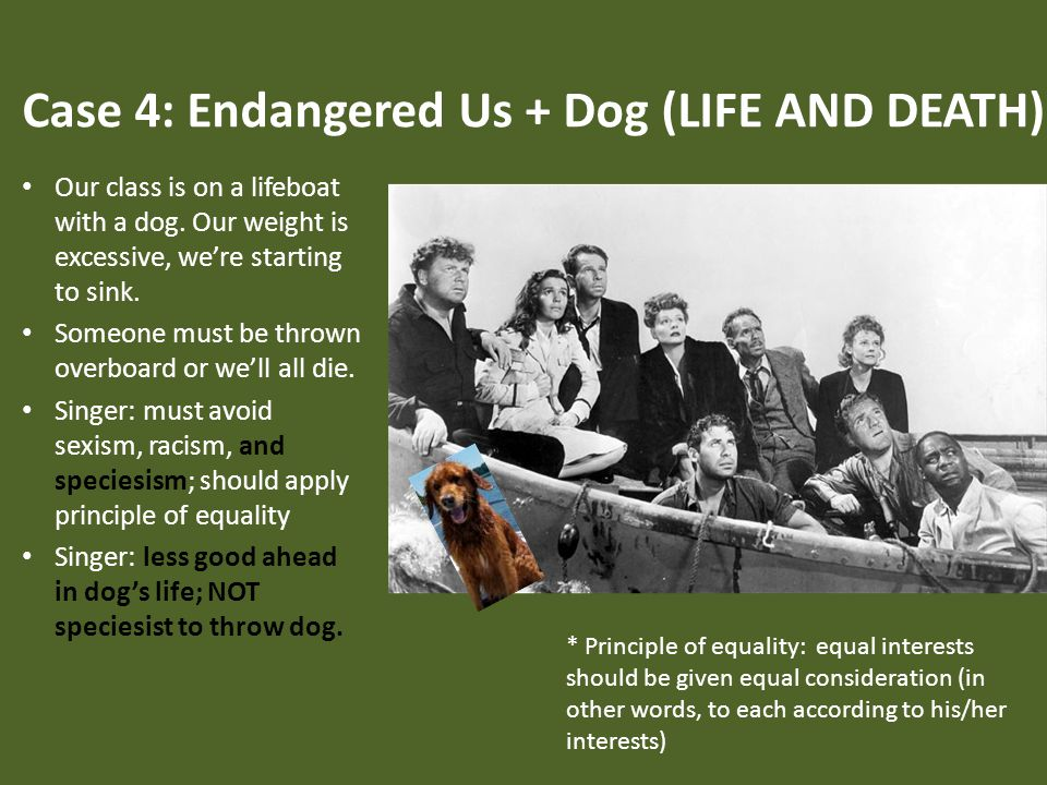 Case 4: Endangered Us + Dog (LIFE AND DEATH) Our class is on a lifeboat with a dog.