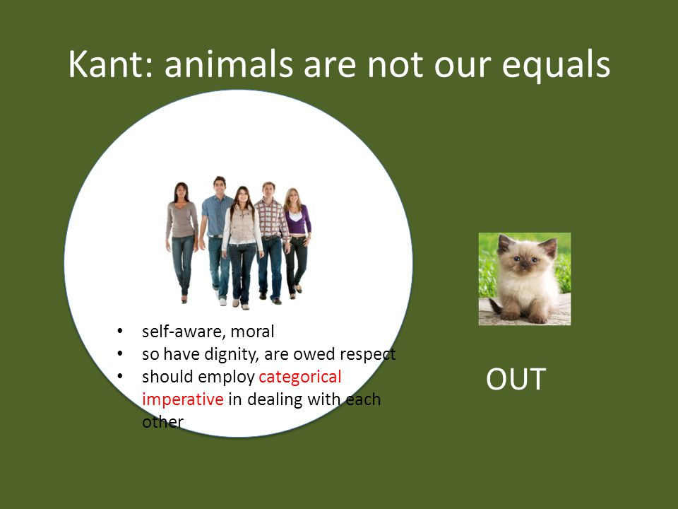 Kant: animals are not our equals self-aware, moral so have dignity, are owed respect should employ categorical imperative in dealing with each other OUT