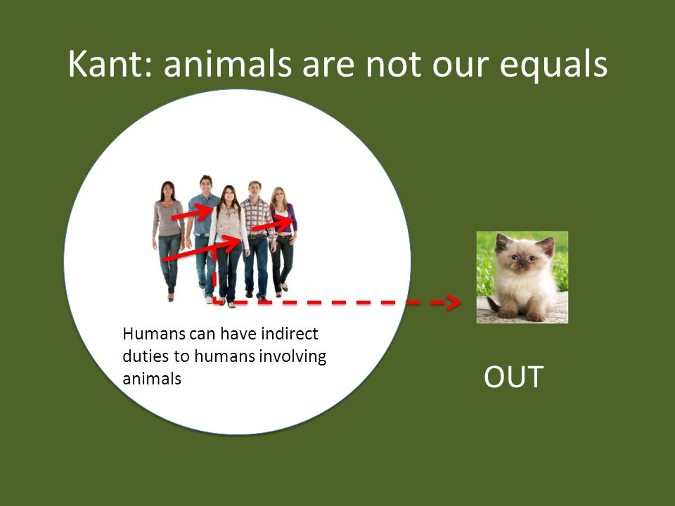 Kant: animals are not our equals Humans can have indirect duties to humans involving animals OUT