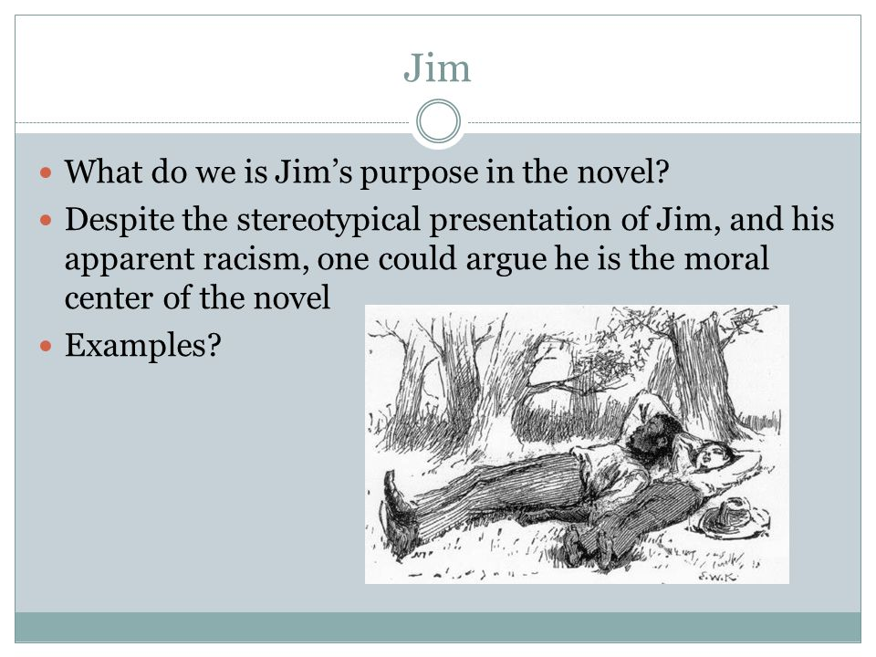 Jim What do we is Jim's purpose in the novel.