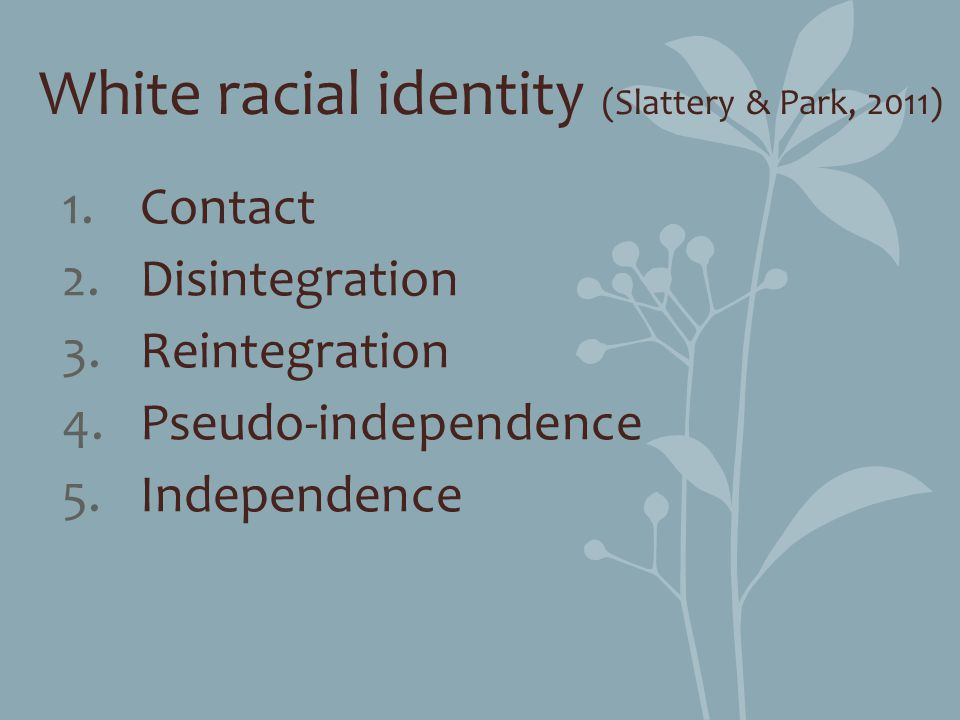 White racial identity (Slattery & Park, 2011) 1.Contact 2.Disintegration 3.Reintegration 4.Pseudo-independence 5.Independence