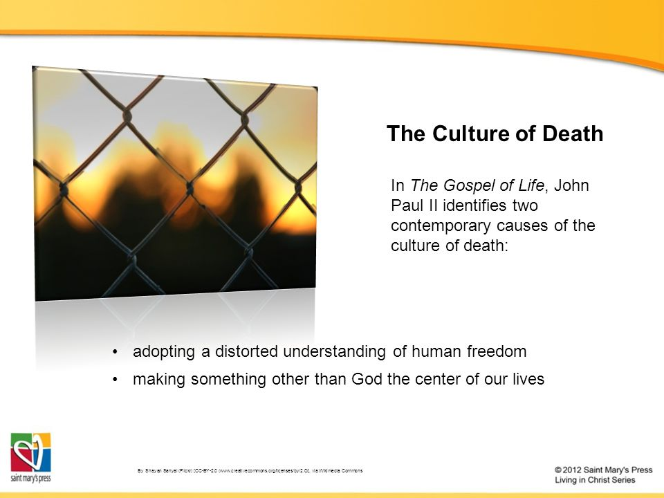 In The Gospel of Life, John Paul II identifies two contemporary causes of the culture of death: By Shayan Sanyal (Flickr) [CC-BY-2.0 (www.creativecommons.org/licenses/by/2.0)], via Wikimedia Commons adopting a distorted understanding of human freedom making something other than God the center of our lives The Culture of Death