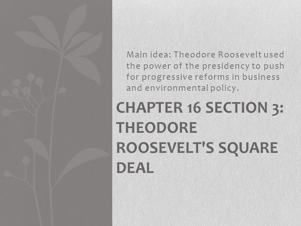 Main idea: Theodore Roosevelt used the power of the presidency to push for progressive reforms in business and environmental policy. CHAPTER 16 SECTIO