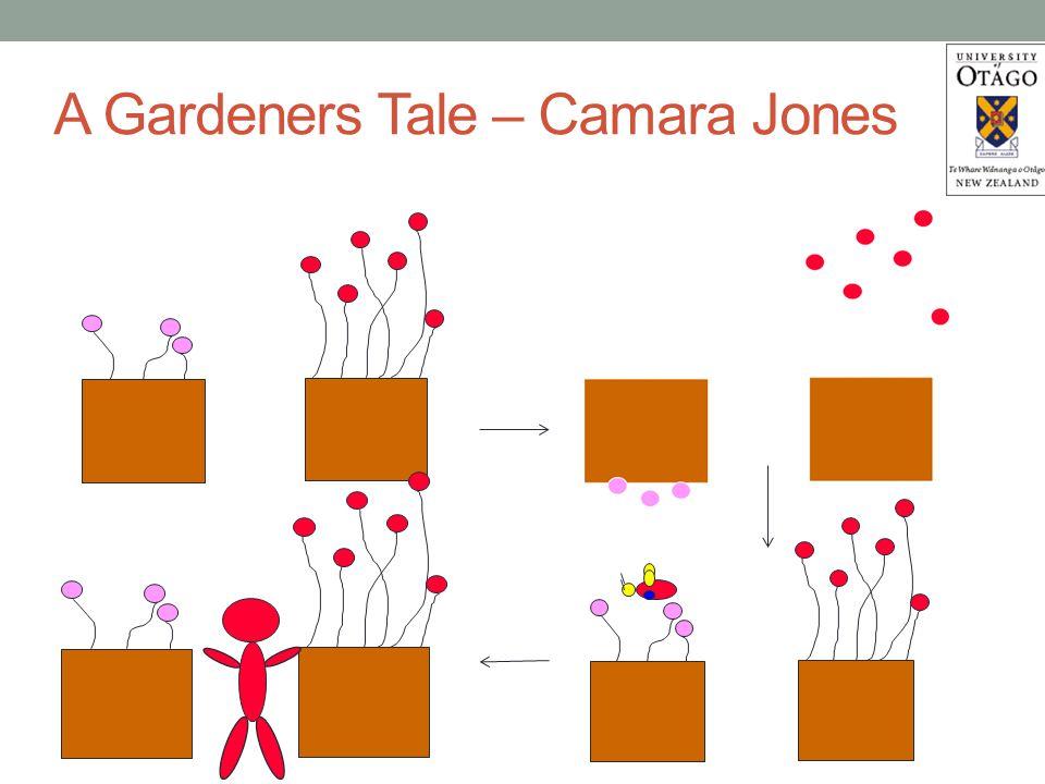 A Gardeners Tale – Camara Jones