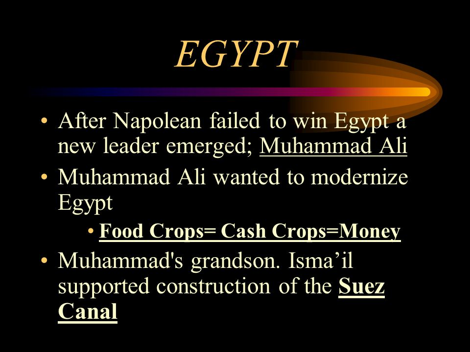 EGYPT After Napolean failed to win Egypt a new leader emerged; Muhammad Ali Muhammad Ali wanted to modernize Egypt Food Crops= Cash Crops=Money Muhamm