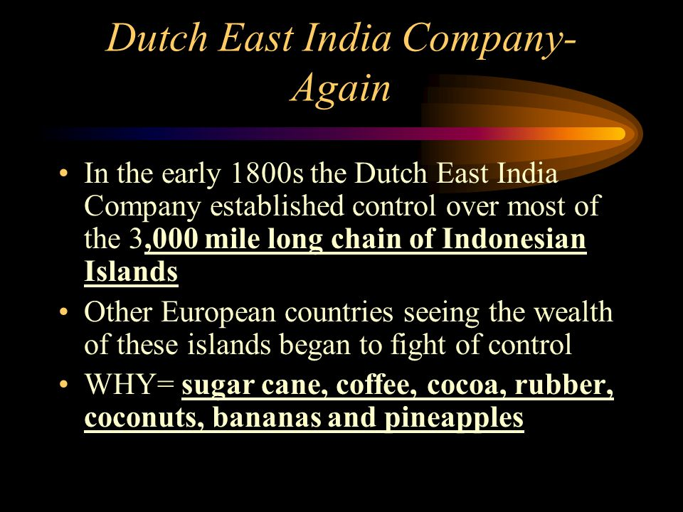 Dutch East India Company- Again In the early 1800s the Dutch East India Company established control over most of the 3,000 mile long chain of Indonesi