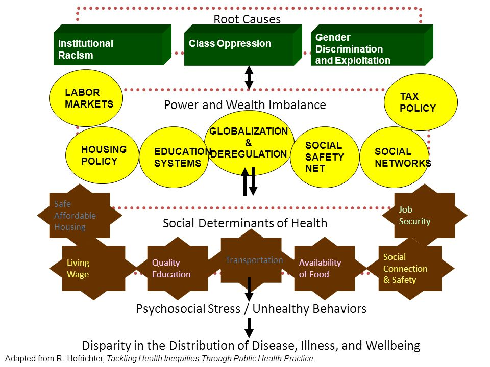 Root Causes Power and Wealth Imbalance LABOR MARKETS GLOBALIZATION & DEREGULATION HOUSING POLICY EDUCATION SYSTEMS TAX POLICY Social Determinants of Health Disparity in the Distribution of Disease, Illness, and Wellbeing Institutional Racism Class Oppression Gender Discrimination and Exploitation SOCIAL NETWORKS SOCIAL SAFETY NET Safe Affordable Housing Social Connection & Safety Quality Education Job Security Living Wage Transportation Availability of Food Psychosocial Stress / Unhealthy Behaviors Adapted from R.