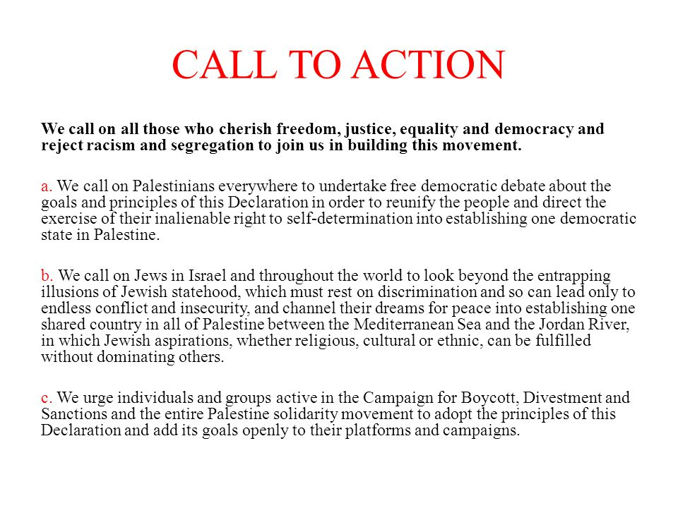 CALL TO ACTION We call on all those who cherish freedom, justice, equality and democracy and reject racism and segregation to join us in building this movement.