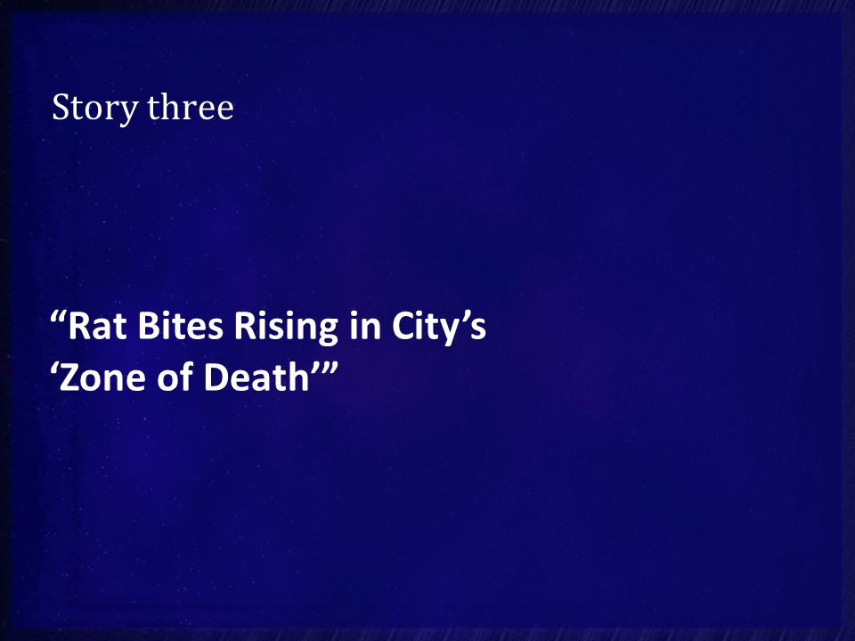 "Story three ""Rat Bites Rising in City's 'Zone of Death'"""