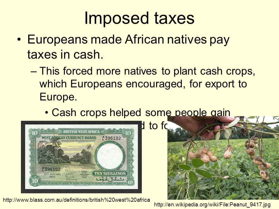 Imposed taxes Europeans made African natives pay taxes in cash.