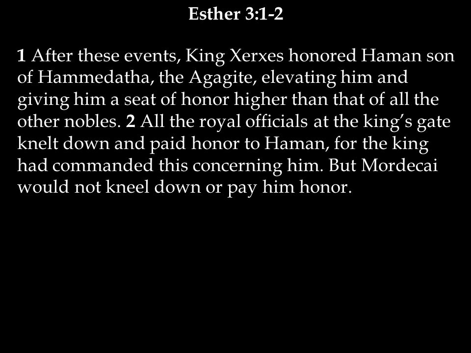 1 After these events, King Xerxes honored Haman son of Hammedatha, the Agagite, elevating him and giving him a seat of honor higher than that of all the other nobles.