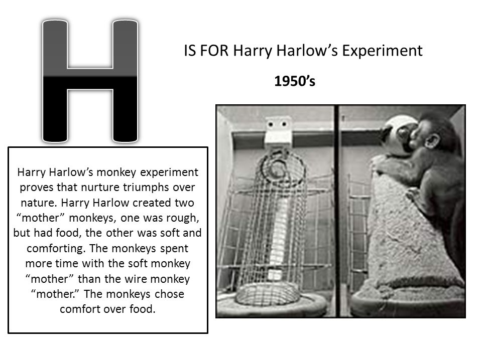 "IS FOR Harry Harlow's Experiment Harry Harlow's monkey experiment proves that nurture triumphs over nature. Harry Harlow created two ""mother"" monkeys,"