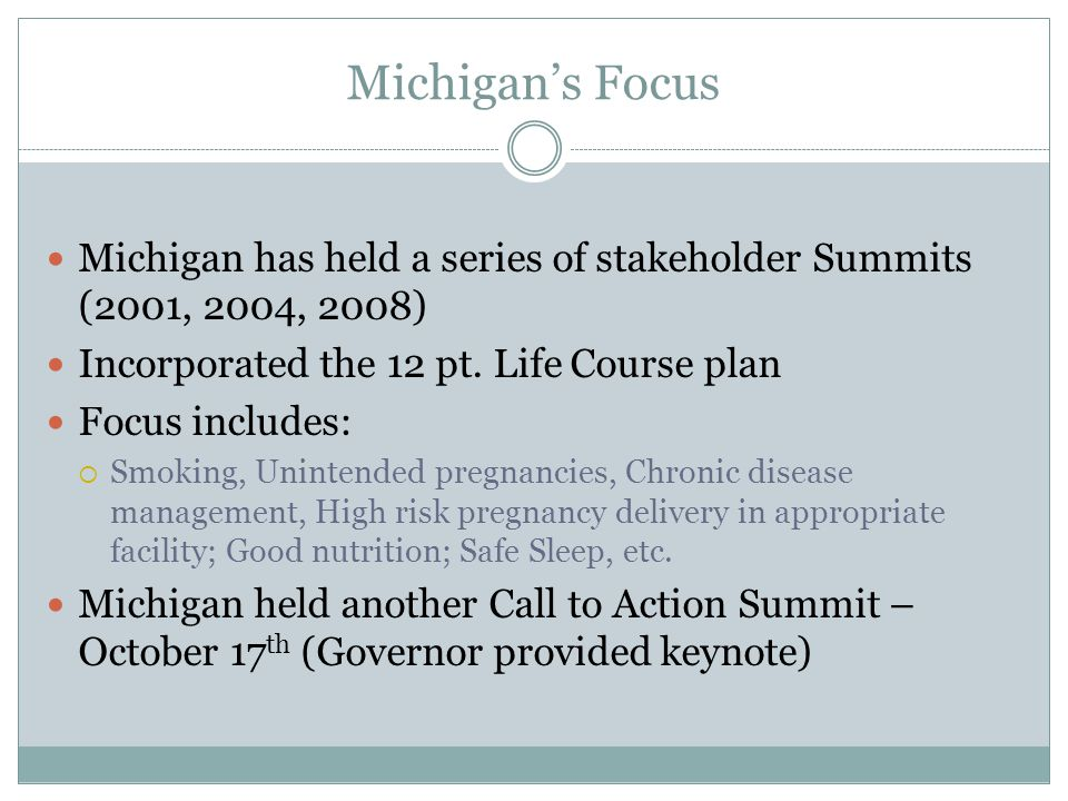 Michigan's Focus Michigan has held a series of stakeholder Summits (2001, 2004, 2008) Incorporated the 12 pt.